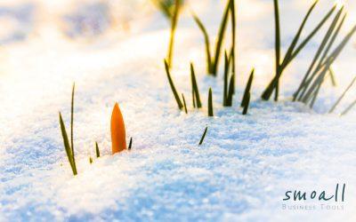 Les fonctionnalités d'hiver bourgeonnent : nouveau menu, fournisseurs et factures d'achat